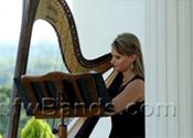 DFW Harp